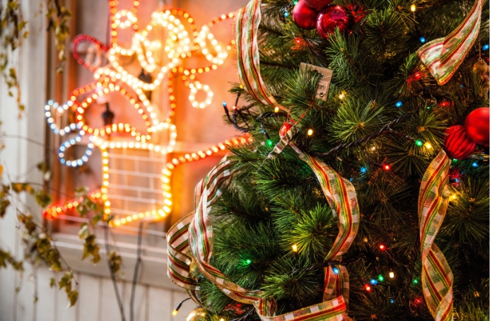 The Origin Of Christmas Tree | Events